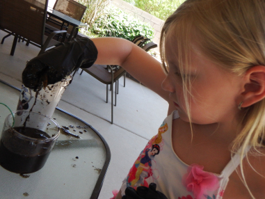 Electricity from Mud?! Educational Innovations Blog
