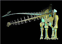 Fossils and Dinosaurs Lesson - Educational Innovations Blog
