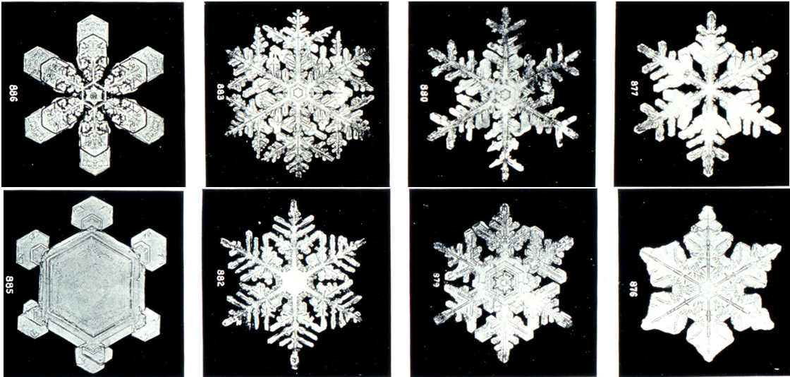 Making Scientifically-Accurate Snowflakes - Educational Innovations Blog